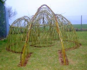Llanwenog Willow Structure