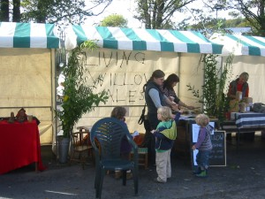 Living Willow Wales stall at Lampeter Apple Day Oct 10th 2009