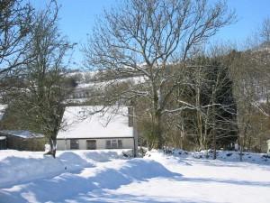 Llwyncelyn in the snow
